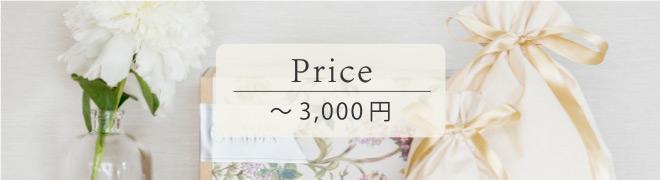 ギフトセット ~3,000円