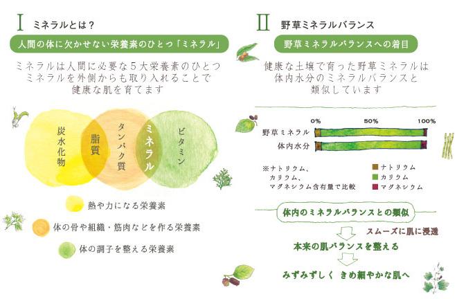 Iミネラルとは? 人間の体に欠かせない栄養素のひとつ「ミネラル」 │ II野草ミネラルバランス 野草ミネラルバランスへの着目