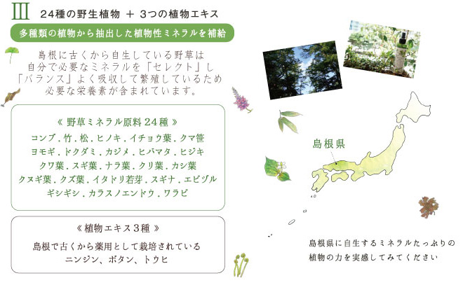 III24種の野生植物+3つの植物エキス 多種類の植物から抽出した植物性ミネラルを補給