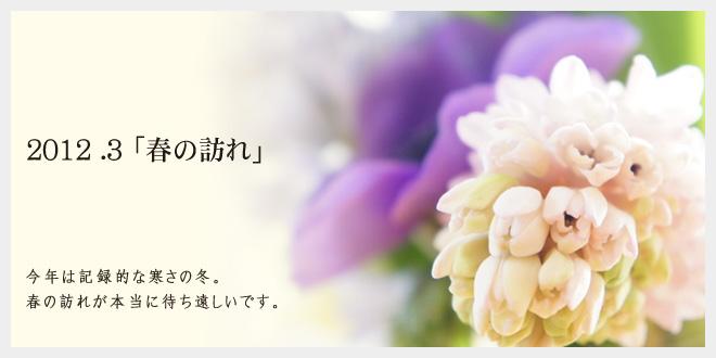 2012.3 春の訪れ
