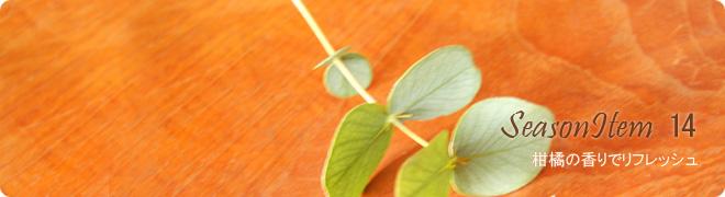 SeasonItem14 柑橘の香りでリフレッシュ