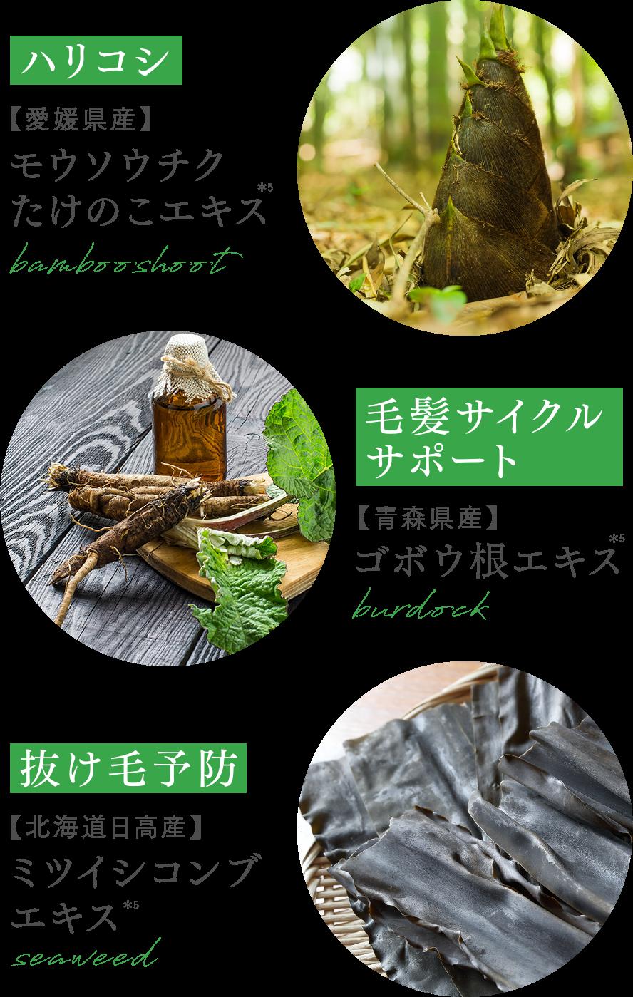 効果のある植物3種の画像