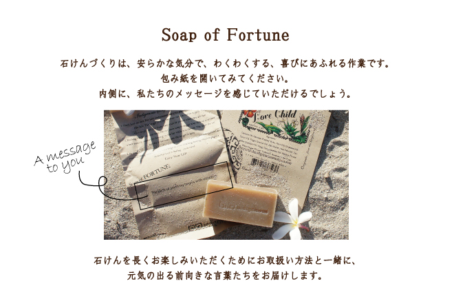 Soap of Fortune