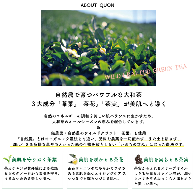 2014QUON_04 - image