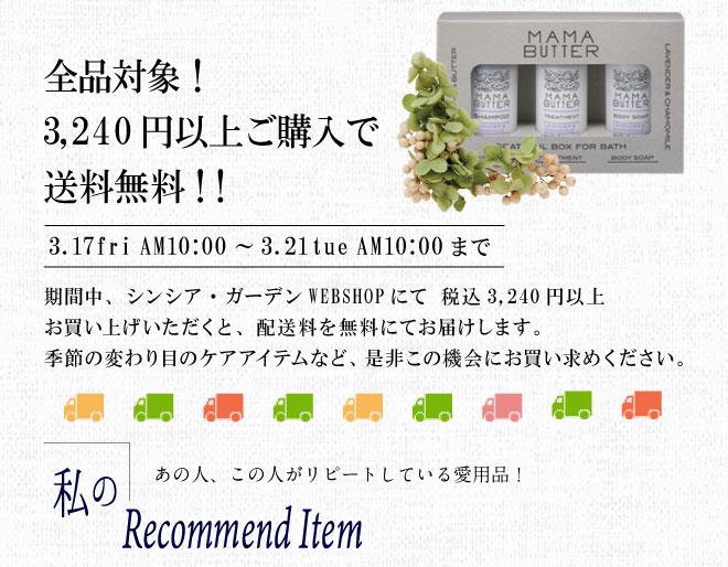 2017年3月3240円以上送料無料