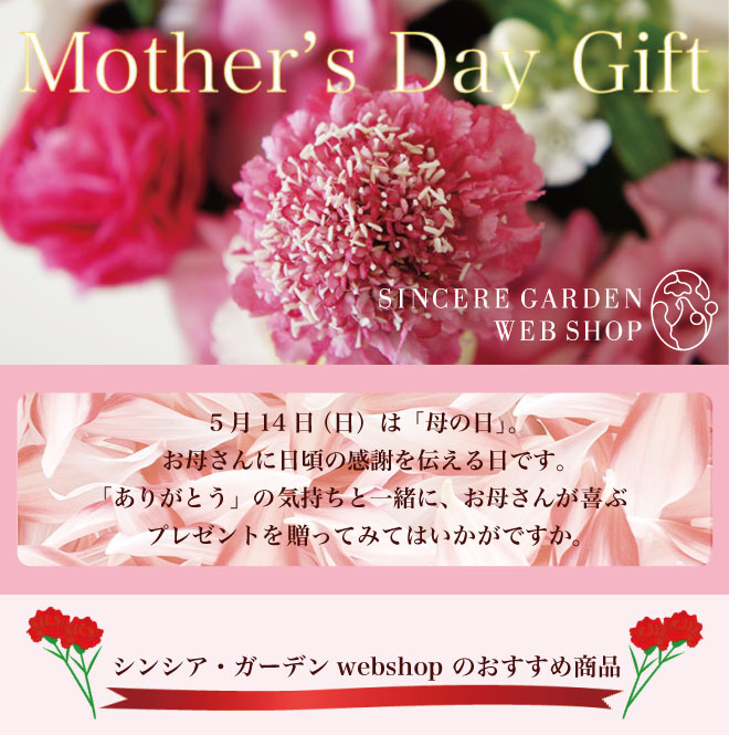 シンシア・ガーデンの母の日キャンペーン