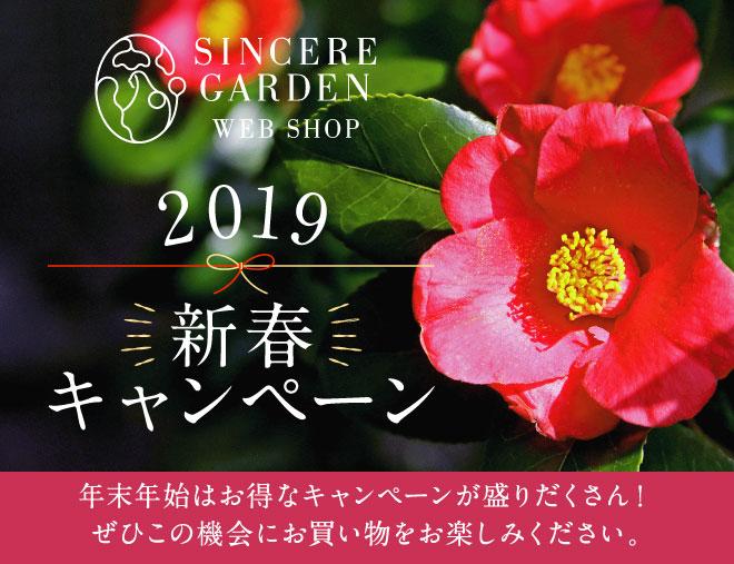 2019年新春キャンペーン