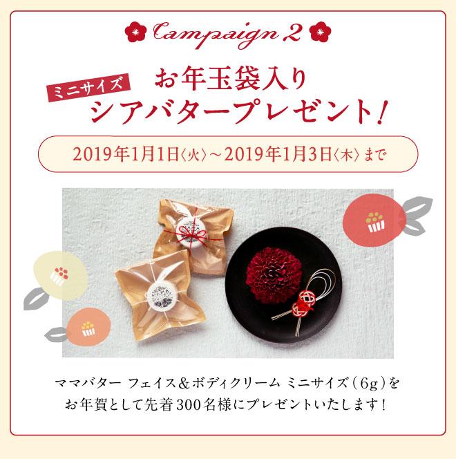 2019年新春キャンペーン お年玉