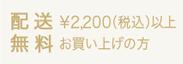今だけ¥2,200で送料無料